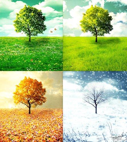 Teach Days of Week/Seasons/Months
